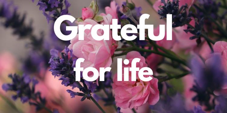 Grateful_attitude towards retirement_outside-multicultural-magazine